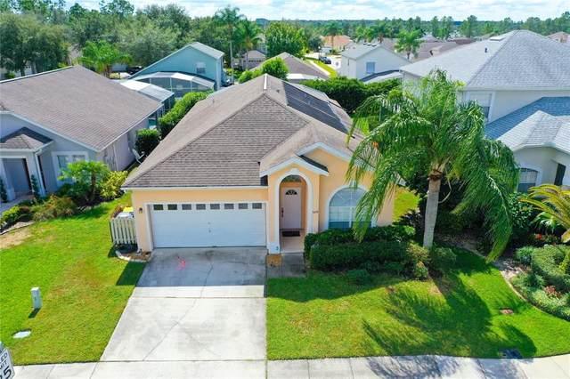 329 Cork Way, Davenport, FL 33897 (MLS #P4917810) :: Orlando Homes Finder Team