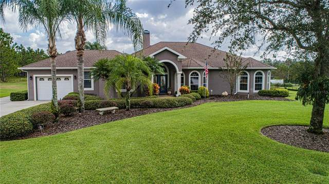 3851 Muncie Rd, Babson Park, FL 33827 (MLS #P4917815) :: McConnell and Associates
