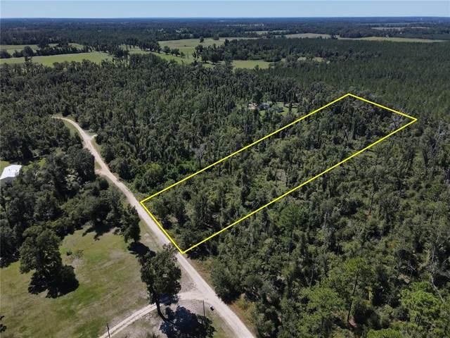 Whispering Pine Circle, GREENWOOD, FL 32443 (MLS #P4917872) :: Delgado Home Team at Keller Williams