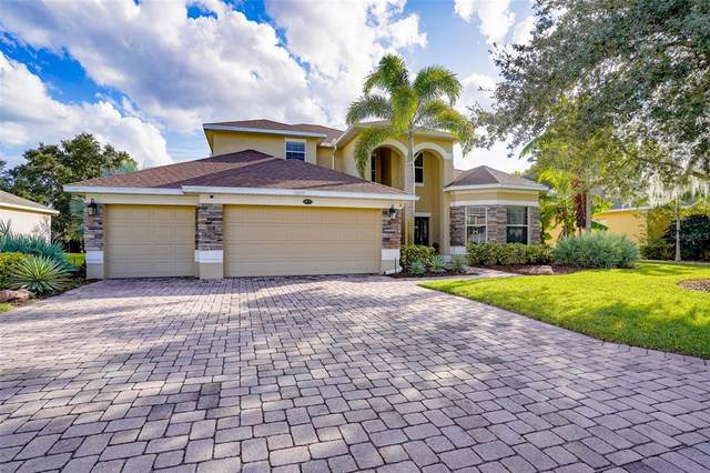1872 Eloise Cove Drive, Winter Haven, FL 33884 (MLS #P4917873) :: Global Properties Realty & Investments