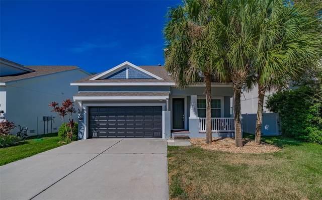 7503 S Trask Street, Tampa, FL 33616 (MLS #P4917892) :: Keller Williams Suncoast