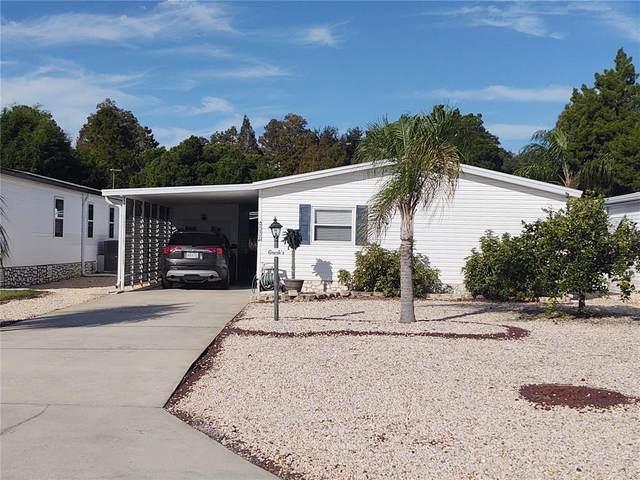 237 Piedmont Park Avenue, Davenport, FL 33897 (MLS #P4917948) :: Bustamante Real Estate