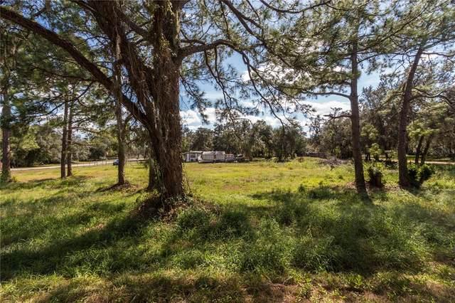 6735 Tackle Court, Lake Wales, FL 33898 (MLS #P4917973) :: Lockhart & Walseth Team, Realtors