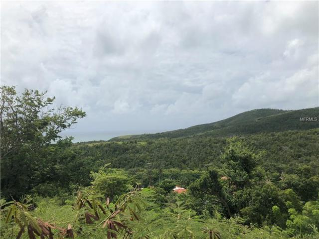 19 Ridge Top, HUMACAO, PR 00791 (MLS #PR8800326) :: Advanta Realty