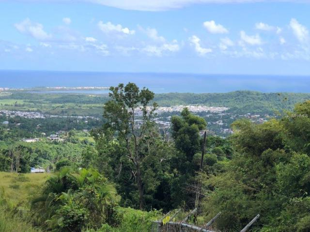 Address Not Published, RIO GRANDE, PR 00745 (MLS #PR8800347) :: Cartwright Realty
