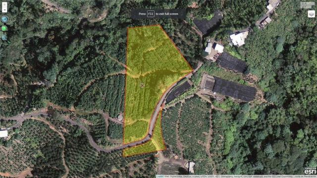 F Calle Cuesta La Colonia, ADJUNTAS, PR 00601 (MLS #PR8800515) :: Bustamante Real Estate
