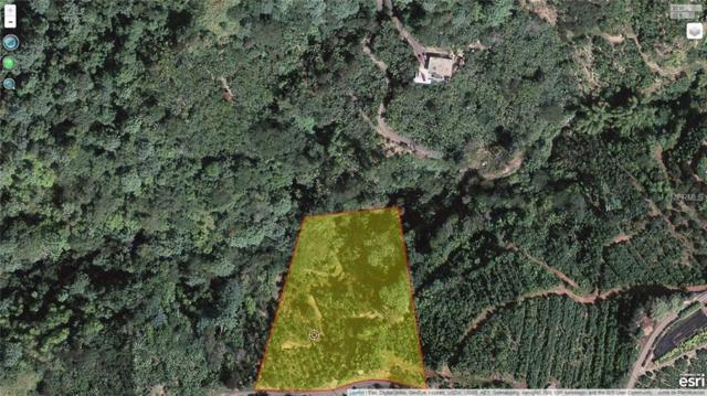 D Calle Cuesta La Colonia, ADJUNTAS, PR 00601 (MLS #PR8800526) :: Bustamante Real Estate