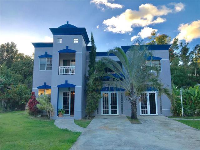 A45 Robles, CAYEY, PR 00736 (MLS #PR9088343) :: Ideal Florida Real Estate