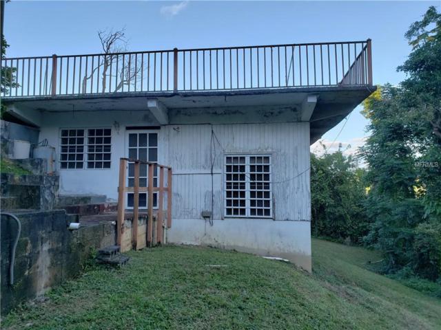 PR-795 La Mesa D, CAGUAS, PR 00725 (MLS #PR9088468) :: Ideal Florida Real Estate