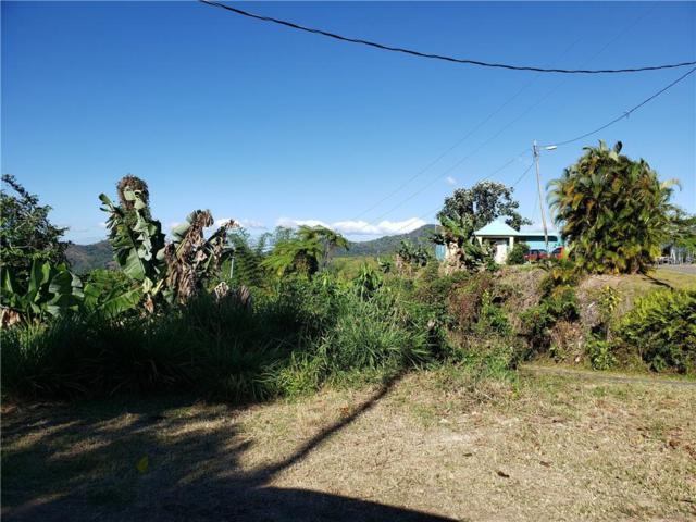 Km 0.7 Interior Pr-5521 Road #4, ADJUNTAS, PR 00601 (MLS #PR9088549) :: The Duncan Duo Team