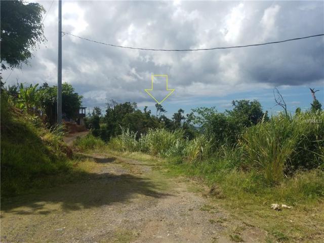 Km 0.7 Interior Pr-5521 Road #3, ADJUNTAS, PR 00601 (MLS #PR9088554) :: The Duncan Duo Team