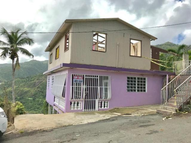 SR 167 Ramal Bo. Nuevo Lot 29, BAYAMON, PR 00957 (MLS #PR9088649) :: Zarghami Group