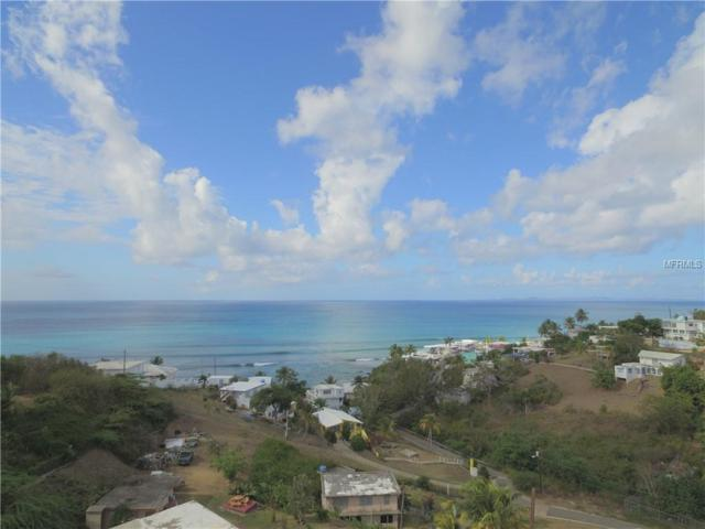 3 Calle Melendez, VIEQUES, PR 00765 (MLS #PR9088729) :: The Duncan Duo Team
