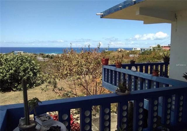 72 Calle Local, VIEQUES, PR 00765 (MLS #PR9088737) :: Burwell Real Estate