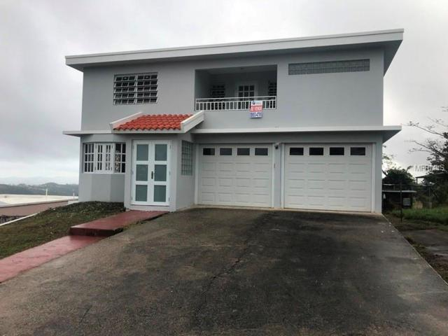 787 787, CIDRA, PR 00739 (MLS #PR9088767) :: The Light Team