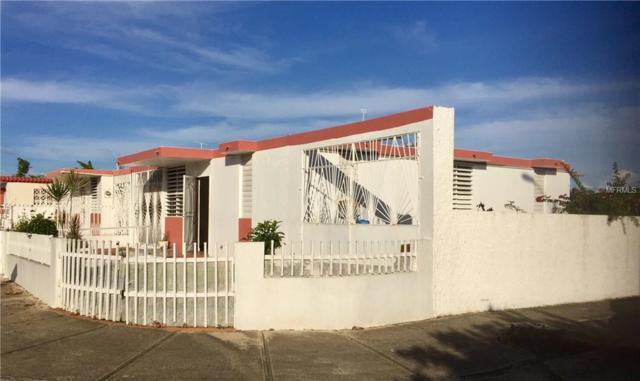 6801 Calle Esteban, PONCE, PR 00731 (MLS #PR9088855) :: Team Bohannon Keller Williams, Tampa Properties