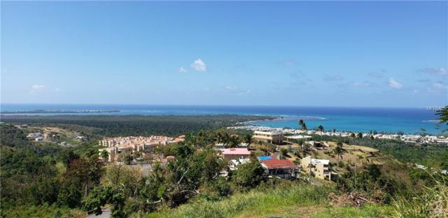 Beacon Hill Estates Pr-968 Km 2.1, RIO GRANDE, PR 00745 (MLS #PR9088857) :: Cartwright Realty