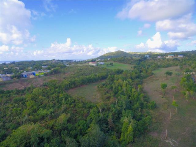 3 Doctor's Path, VIEQUES, PR 00765 (MLS #PR9088976) :: The Duncan Duo Team