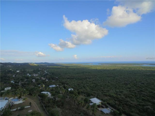 2 Calle 10, VIEQUES, PR 00765 (MLS #PR9089024) :: The Duncan Duo Team