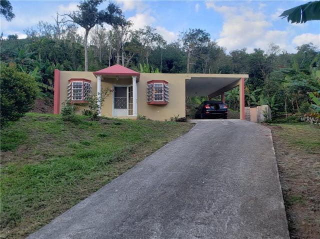PR135 Km5.4 Castaner, ADJUNTAS, PR 00631 (MLS #PR9089040) :: Lockhart & Walseth Team, Realtors