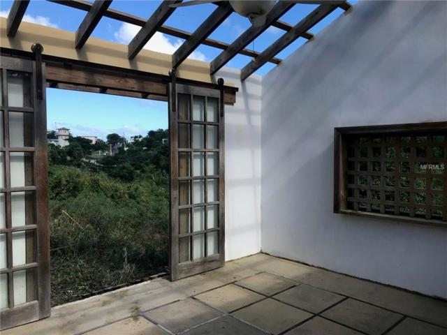 1 Calle De Vacas, VIEQUES, PR 00765 (MLS #PR9089058) :: Burwell Real Estate