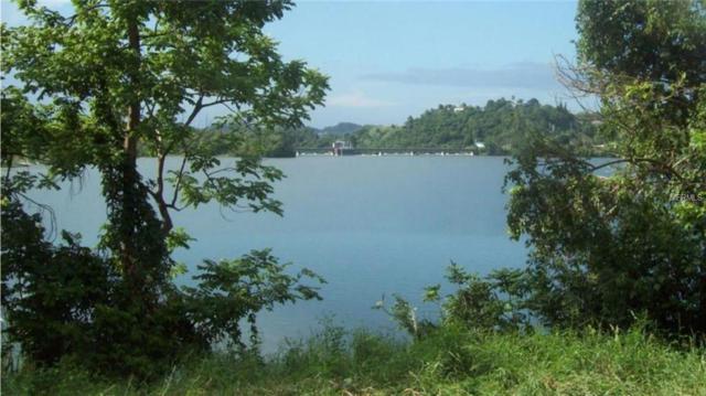 Road 827 Km 5.4, TOA ALTA, PR 00953 (MLS #PR9089137) :: Ideal Florida Real Estate