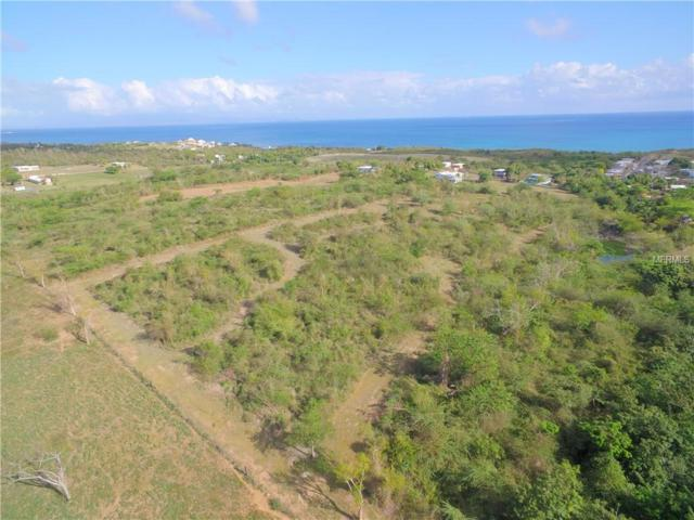 888 Route 200, VIEQUES, PR 00765 (MLS #PR9089157) :: The Duncan Duo Team