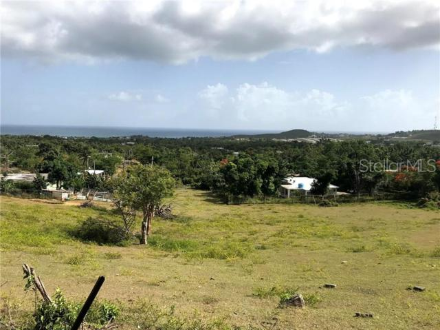 94 Bo Florida, VIEQUES, PR 00765 (MLS #PR9089184) :: The Duncan Duo Team