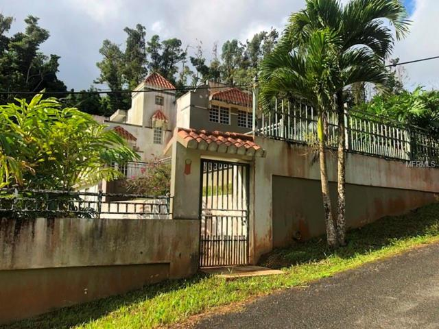 Carr 792 KM 4.0 Barrio Sonadora Sector Campo Alto, AGUAS BUENAS, PR 00703 (MLS #PR9089207) :: Zarghami Group