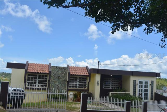 569 Km 2.8 Int Bo. Sabana, OROCOVIS, PR 00720 (MLS #PR9089331) :: Bridge Realty Group
