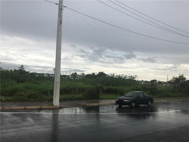 Pr-472 Estate, ISABELA, PR 00662 (MLS #PR9089389) :: The Duncan Duo Team