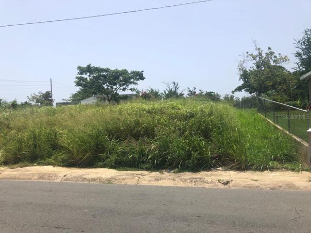 Carr 113, QUEBRADILLAS, PR 00678 (MLS #PR9089483) :: Armel Real Estate