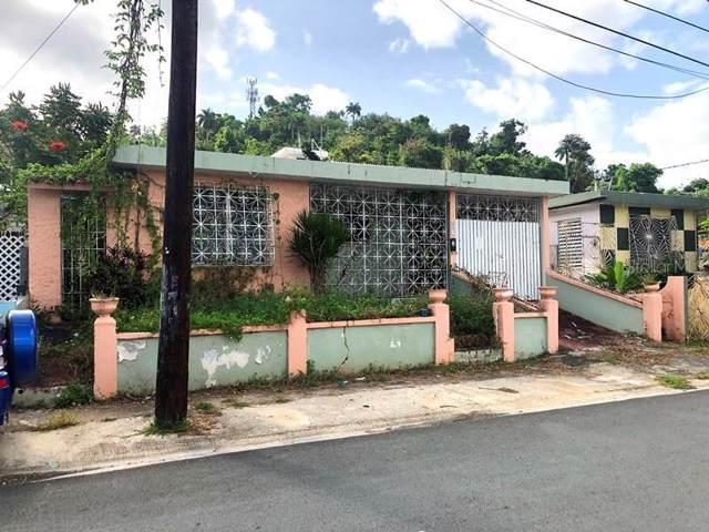 4 Street Colinas Del Este Dev, HUMACAO, PR 00791 (MLS #PR9089663) :: Team Bohannon Keller Williams, Tampa Properties