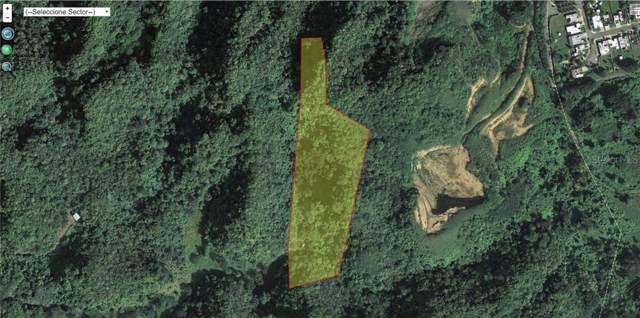Camino Cumbres Del Calvario, ARECIBO, PR 00612 (MLS #PR9089705) :: Griffin Group