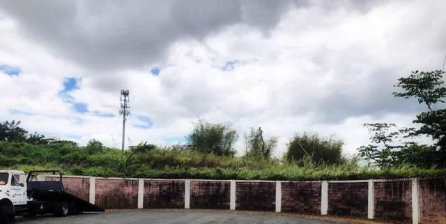 Rio Duey Calle Rio Duey, BAYAMON, PR 00961 (MLS #PR9089708) :: The Duncan Duo Team