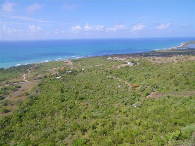 1 Carrion Court, VIEQUES, PR 00765 (MLS #PR9089731) :: Cartwright Realty