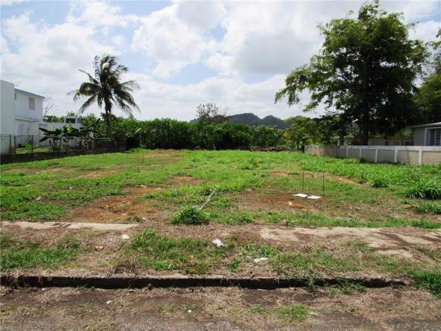 Valle Verde, ARECIBO, PR 00612 (MLS #PR9089743) :: Griffin Group