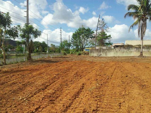 33 Ave Jose Mercado, CAGUAS, PR 00725 (MLS #PR9089786) :: Griffin Group
