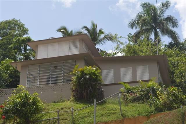 Carr. 155 km 26.4 Barrio Orocovis, OROCOVIS, PR 00720 (MLS #PR9090012) :: Armel Real Estate