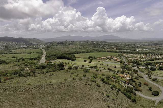 1A Palmas Plantation Lot B3, HUMACAO, PR 00791 (MLS #PR9090064) :: KELLER WILLIAMS ELITE PARTNERS IV REALTY