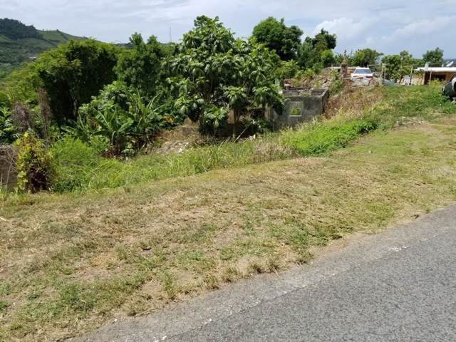 Carr 757, PATILLAS, PR 00723 (MLS #PR9090108) :: Everlane Realty