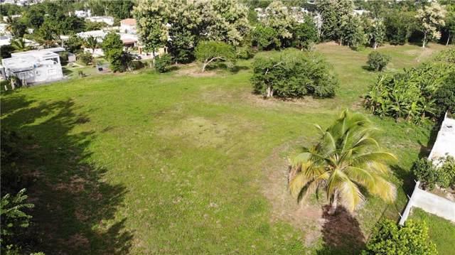 Calle Adela Delgado Km 39.5 Int  Bo. Hato Arriba, ARECIBO, PR 00612 (MLS #PR9090377) :: Griffin Group