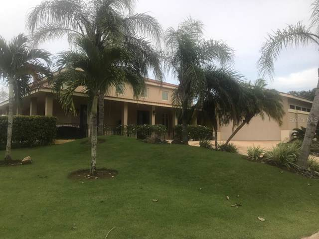 451 NW Camino De Euajatacq, DORADO, PR 00646 (MLS #PR9090466) :: Team Bohannon Keller Williams, Tampa Properties
