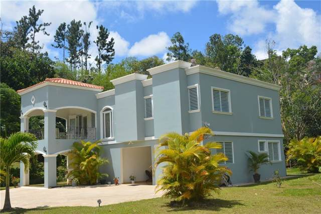 156 Km 2.3 Bo. Botijas #2, OROCOVIS, PR 00720 (MLS #PR9090809) :: Team Bohannon Keller Williams, Tampa Properties