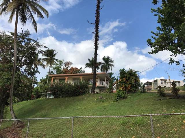 PR 677 Maricao Ward, VEGA ALTA, PR 00692 (MLS #PR9090902) :: The Duncan Duo Team
