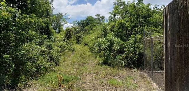 PR 417 km 0.6 Bo. Piedras Blancas, AGUADA, PR 00602 (MLS #PR9090909) :: Baird Realty Group