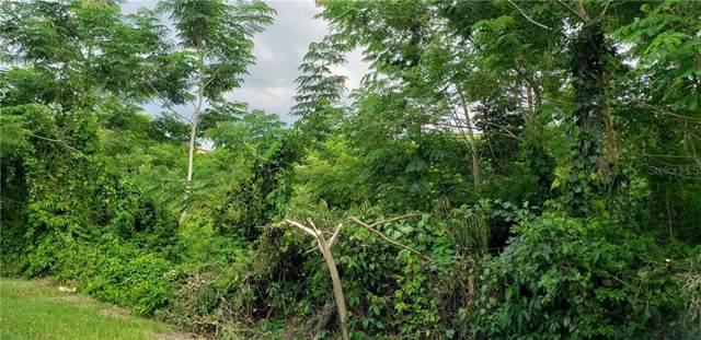 PR 115 km 24.4 Bo. Asomante, AGUADA, PR 00602 (MLS #PR9090913) :: Baird Realty Group