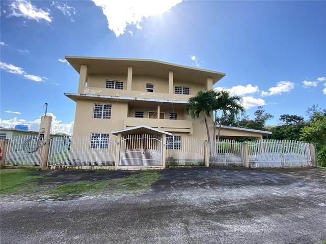 CARR 198 Ceiba Sur Canales, JUNCOS, PR 00777 (MLS #PR9091001) :: Burwell Real Estate