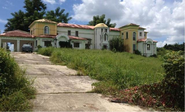 41 Calle Gripiãƒâ€˜As La Estancia Bo. Culebrina, SAN SEBASTIAN, PR 00685 (MLS #PR9091042) :: Your Florida House Team