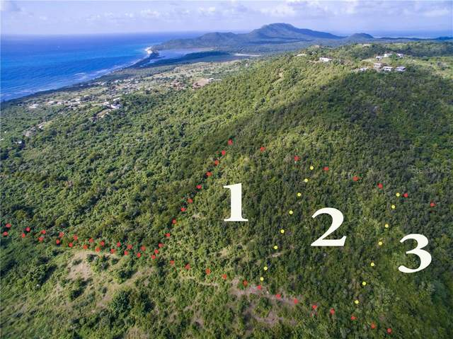 1 Calle Gratiosa, VIEQUES, PR 00765 (MLS #PR9091083) :: Team Borham at Keller Williams Realty